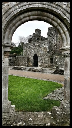 Mellifont Abbey: 20161113_132747-01_large.jpg