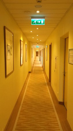 a very yellow hallway that led to my very yellow room picture of