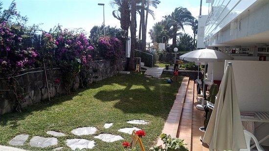 El Capricho Apartamentos : Backgarden