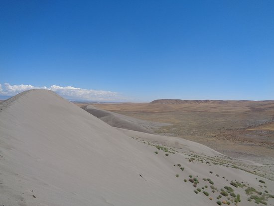 ‪‪Bruneau‬, ‪Idaho‬: view of the dune‬