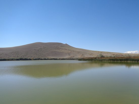 Bruneau, ID: the dune as seen from the river