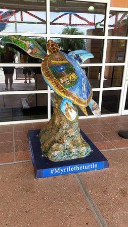 Yulee, FL: Myrtle!