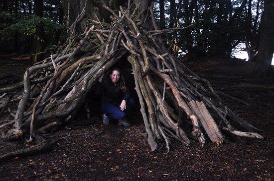 Somerset, UK: Jugando en el bosque