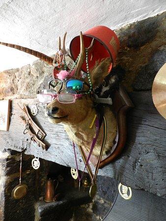 Lustleigh, UK: Deer me!