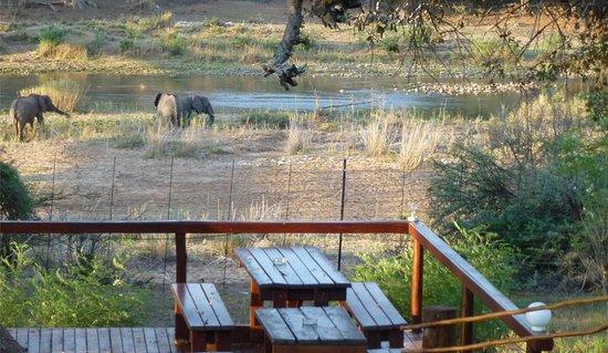 Three Bridges Restaurant at The Outpost: Oct 21 Elephants