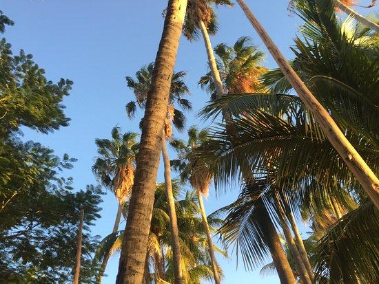 La Concha Beach Resort: photo6.jpg