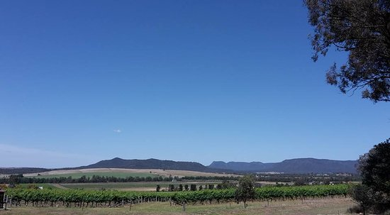 Broke, Australia: View from the winery