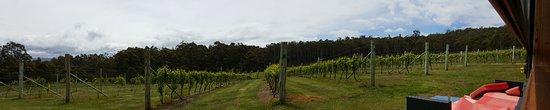 Lunawanna, Australien: 20161114_133923_large.jpg