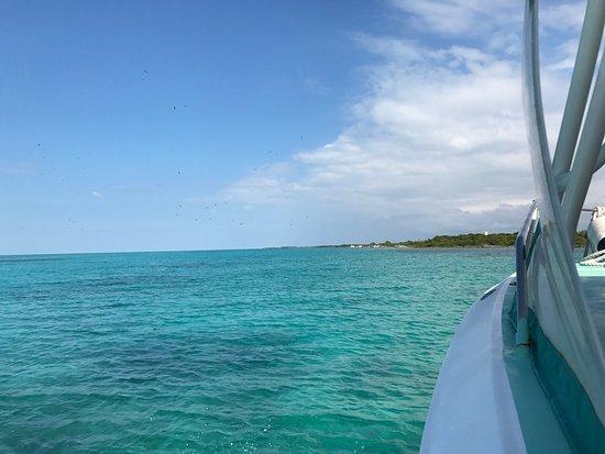 Ocean Tours Water Sports,  El Cozumeleno Beach Resort: photo0.jpg
