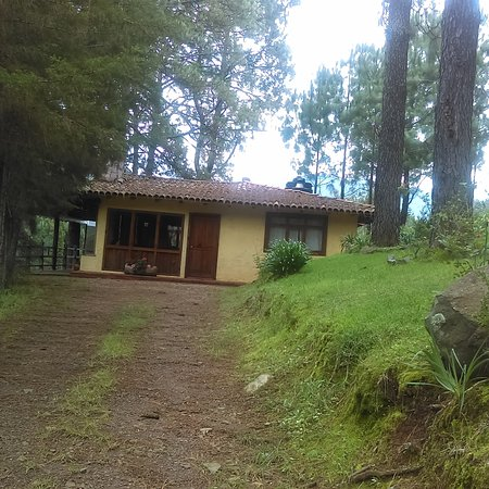 Cabanas El Pinar