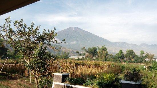 Nusa Tenggara Timur, Indonesia: photo0.jpg