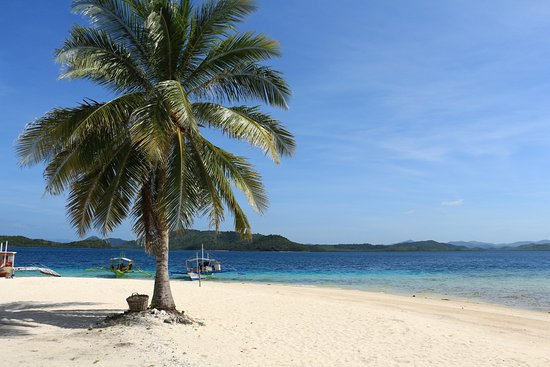 Busuanga Island, Filipinler: 南國風情