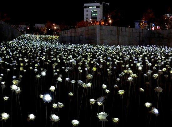 Dongdaemun Design Plaza Ddp Led Rose Garden At Site