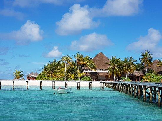 Mirihi island resort maldivas opiniones comparaci n de for Conrad maldives precios