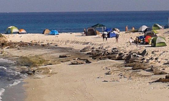 Seeb, Oman: camping site