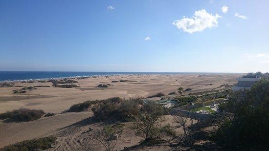 Sahara Playa: DSC_0072_large.jpg