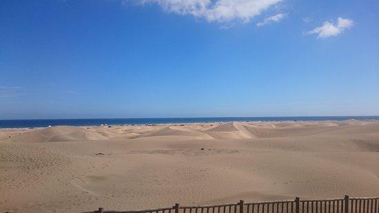 HL Sahara Playa: DSC_0067_large.jpg