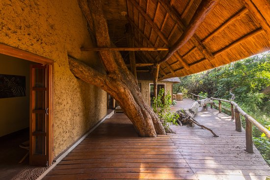 Luxury Tree Top Tent with a king-sized bed - Picture of Ruzizi Tented Lodge, Akagera National Park - Tripadvisor