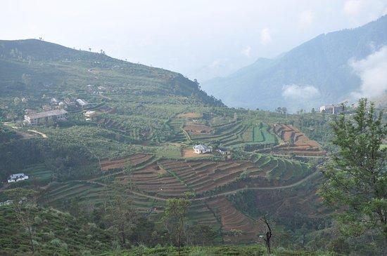 Ohiya, Sri Lanka: Scenic view