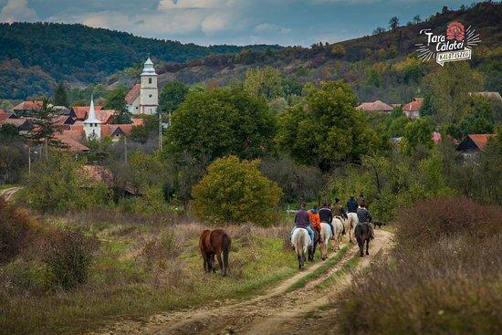 Cluj County, Romania: Private tours in Cãlata Land / Kalotaszeg / Tara Calatei