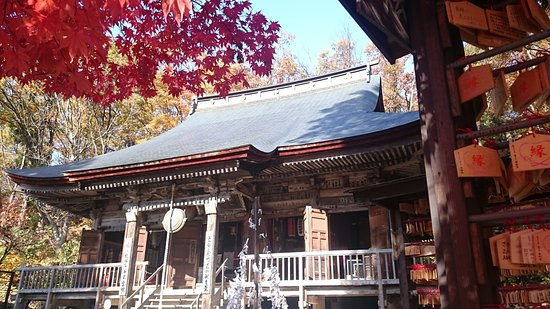 Tendo, Japan: 真っ赤な紅葉