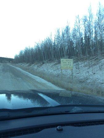Coldfoot, AK: photo8.jpg