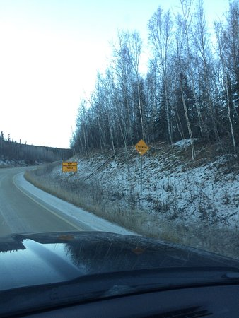 Coldfoot, AK: photo9.jpg