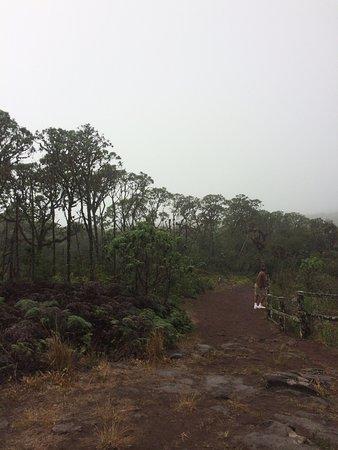 Santa Cruz, Ekwador: photo1.jpg
