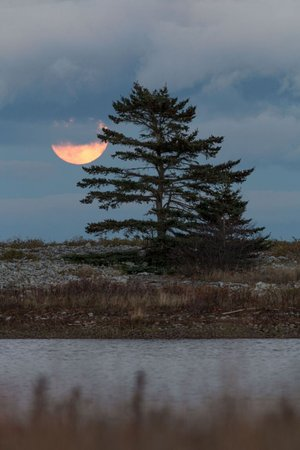 Cabot Shores Wilderness Resort and Retreat: Supermoon over the Atlantic view from our side of the pond!