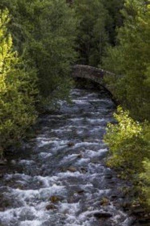 La Massana Parish, أندورا: Pont romànic de Sant Antoni de la Grella 