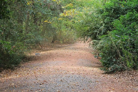 North Augusta, Carolina Selatan: FB_IMG_1479129974453_large.jpg