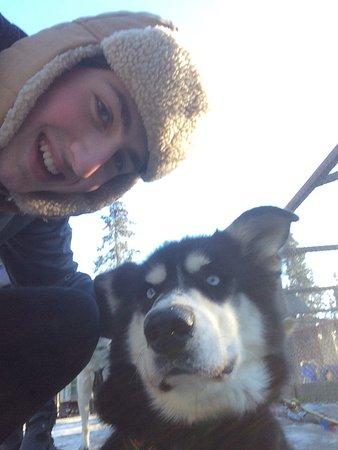 Sled Dog Demonstration: photo0.jpg