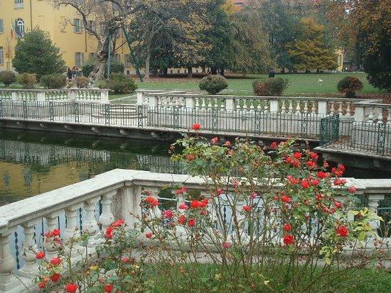 Le rose rosse attorno alla peschiera foto di giardini della