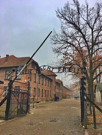 Auschwitz Krakow - Tours: Ingresso campo di Auschwitz