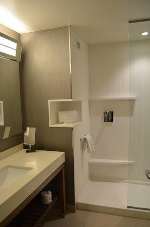 Littleton, MA: bathroom with walk-in shower