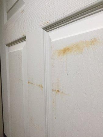 Peachtree City, GA: feces on the door