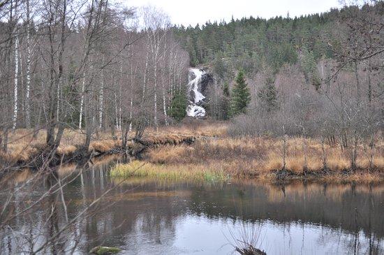 Bullaren, Швеция: Älgåfallet sett från norska sidan