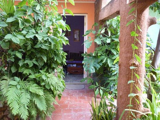 Casa OsmaryAlberto Photo