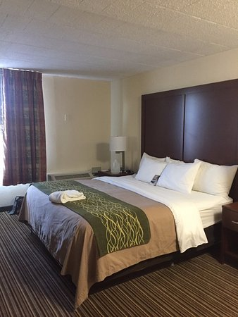 Comfort Inn-Pocono Mountain: King Suite