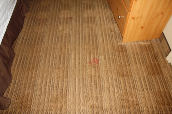Germantown, MD: Stained carpets