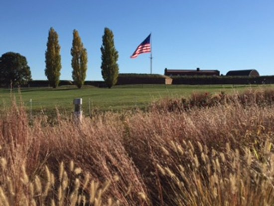 Fort McHenry National Monument: Fort on the hill