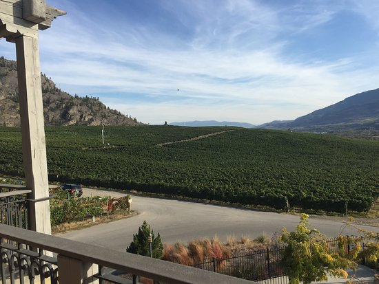 Burrowing Owl Estate Winery Guest House Photo
