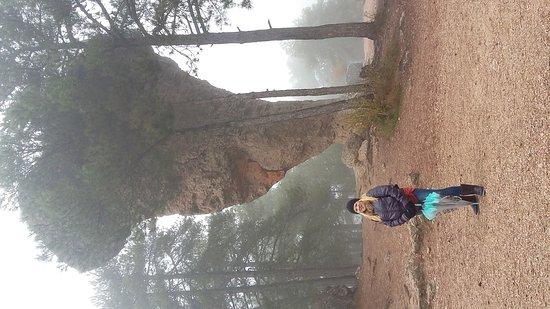 Villalba de la Sierra, Spanje: Encantados