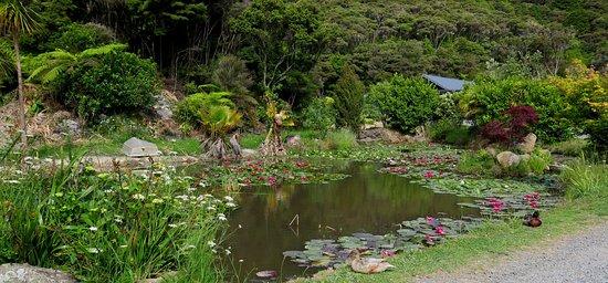 Bay of Islands Campervan Park Foto