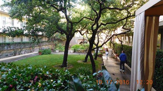 Marin Suites Hotel: Courtyard