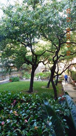 Corte Madera, Californien: Courtyard