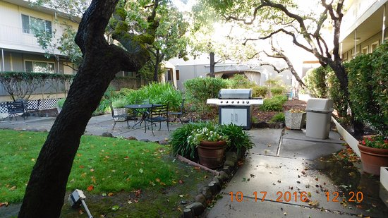 Corte Madera, CA: 3 BBQs were available for use with outdoor seating