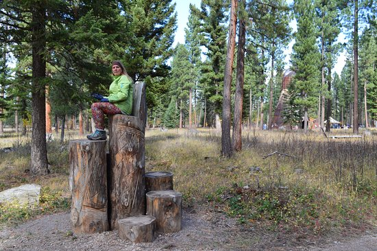 Lincoln, MT: Throne in the woods.