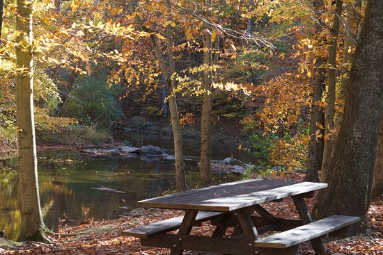 Media, PA: picnic area by the creek