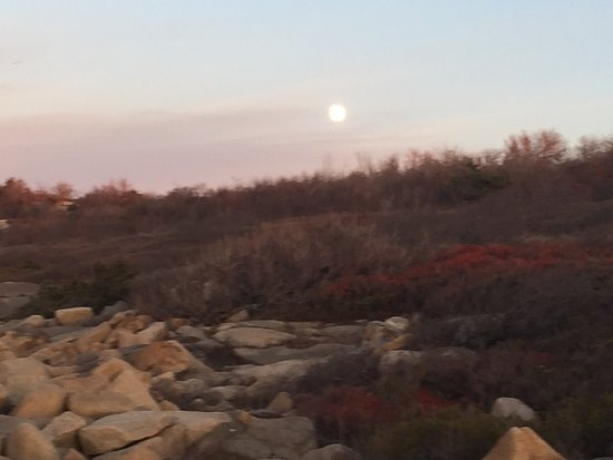 Halibut Point State Park: photo4.jpg